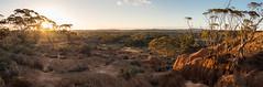 red banks panorama - 3701 (liam.jon_d) Tags: australia australian baldina baldinacreek billdoyle cliff cliffs conservationpark cp mallee midnorth multipleimage multiplephoto panorama panoramic redbanks redbanksconservationpark sa southaustralia southaustralian stitch stitched themallee themidnorth wide wideangle bestlandscapeimset pickmeset 100mostrecentmostinteresting mostrecmostintimset popularimset 100mostimset 100mosthq