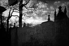 The tomb of Oscar Wilde (madras91) Tags: nb noiretblanc blackandwhite bw monochrome tomb oscarwilde leicam leica leicam6 m6 film rollei cimetery cimetiere pèrelachaise