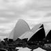 The opera house, Sydney in b&w.