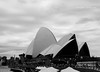 The opera house, Sydney in b&w. (natureflower) Tags: opera house sydney australia architecture sea