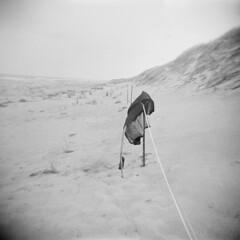 Off Season #35 (LowerDarnley) Tags: holga pei princeedwardisland greenwich beach ocean offseason jacket dunes sand atlanticcanada maritimes