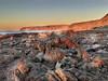 Cape Jervis Sunset (cheezepleaze) Tags: coast rocks sunset windfarm capejervis greatwhitesharkholidaypark iphone hss lowlight goldenlight