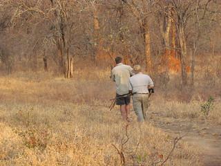 Zimbabwe Cape Buffalo Hunt 32