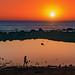 Orange+Sunset
