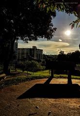 >> Natureza urbana << #udi #udia #uberlandia #minhauberlândia #turismomg #minasgeraiis #deminasàsgerais #brasil #instapic #instamood #cores #naturezaurbana #bluesky #instahub #samsungmobile #fotografia #mobilephotography #naturephotography #beleza #retrat (profalucastro) Tags: mobilephotography naturephotography retratosdeminas samsungmobile minhauberlândia instahub minasgeraiis udia brasil deminasàsgerais beleza bluesky instapic instagood colors follow fotografia cores turismomg udi instamood uberlandia naturezaurbana