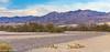 Californie-259 (OPS_SPM) Tags: californie usa vacances furnacecreek california étatsunis parcnationaldelavalléedelamort valléedelamort deathvalleynationalpark deathvalley