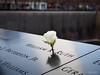 PB293418 (TDG-77) Tags: olympus omd em1 1240mm f28 newyorkcity new york nyc 911 memorial