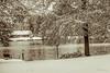 _DSC9983 (dixiedog) Tags: fall landscape mississippi snow