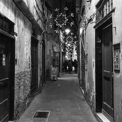 """Christmas Lights"" (giannipaoloziliani) Tags: suburbs alleys alleysofgenoa decay architettura vicoli vicolidigenova obscurity capture capturestreets dark darkness strange streetphotography genoa genova monochrome monocromatico biancoenero blackandwhite nikon nikoncamera nikonphotography"