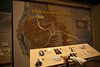 Explorations of the West - National Historic Trails Interpretive Center (BLM_Wyoming) Tags: wilderness nlcs wyoming nhtic explorers interpretive