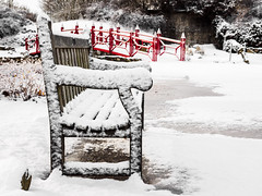 Frosty Seat (mjhedge) Tags: lakeofthewoods mahomet illinois park cold winter snow bench olympus oly olympusomdem1 olympusm1240mmf28 getolympus mikehedge μ43 μ43photography