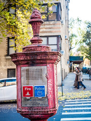 Emergency Call Box on West 190th Street and Bennett Avenue, Fort George, New York City (jag9889) Tags: 2017 20171125 architecture auto automobile bennettavenue bravest building callbox car crosswalk fdny finest firedepartment firedepartmentofthecityofnewyork firefighter firstresponder fortgeorge house intersection lawenforcement manhattan ny nyc nypd newyork newyorkcity newyorkcityfiredepartment newyorkcitypolicedepartment newyorksbravest outdoor policedepartment road street transportation tree usa unitedstates unitedstatesofamerica uppermanhattan vehicle w190street w190thstreet wahi washingtonheights west190thstreet jag9889