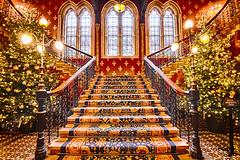 Christmas at the St Pancras Renaissance (sarah_presh) Tags: stpancras renaissancehotel london hotel stairs staircase fancy christmas christmastree stpancrasrenaissancehotel nikond750 hdr nikon1635mm inside indoors architecture windows