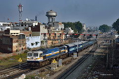 IN - 2017-11-26 - Dhuri (Thomas Kabisch) Tags: india indianrailways wdp4d dhuri