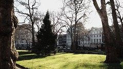 London after Christmas (nadine_wilmanns) Tags: london christmastree christmas christmaslights winter
