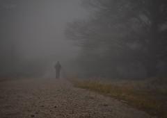 Niebla a tus espaldas (rosslera) Tags: panasonic lumix nervión esperanza soledad camino niebla