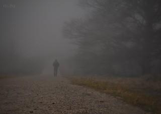 Niebla a tus espaldas