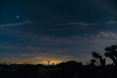 Joshua Tree - Stars in the desert sky (markmacbride) Tags: joshuatree nightsky stars desert landscape sunset california