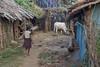 Kawardha - Chhattisgarh - India (wietsej) Tags: kawardha chhattisgarh india tamronspaf1750mmf28xrdiiildaspif sony a100 1750 falls girl cow