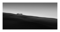 The Body Beautiful (Nick green2012) Tags: blackandwhite landscape minimal trees 21 undulations curves illume