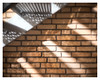 Under the staircase (leo.roos) Tags: brandtrap fireescape stairs steps staircase stairway trap trede meyerprimoplan115f25cm a7rii meyerprimoplan2515 cmount cinelens movielens darosa leoroos
