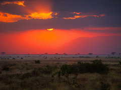 Africa (lesleydugmore) Tags: africa safari kenya red scarlotte colour savanna africanplains elephants orange cloud sun mountain