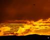 Sunset Departure (MBT Photography) Tags: canon100400l terracehill sanluisobispo sunset canon7dmarkii
