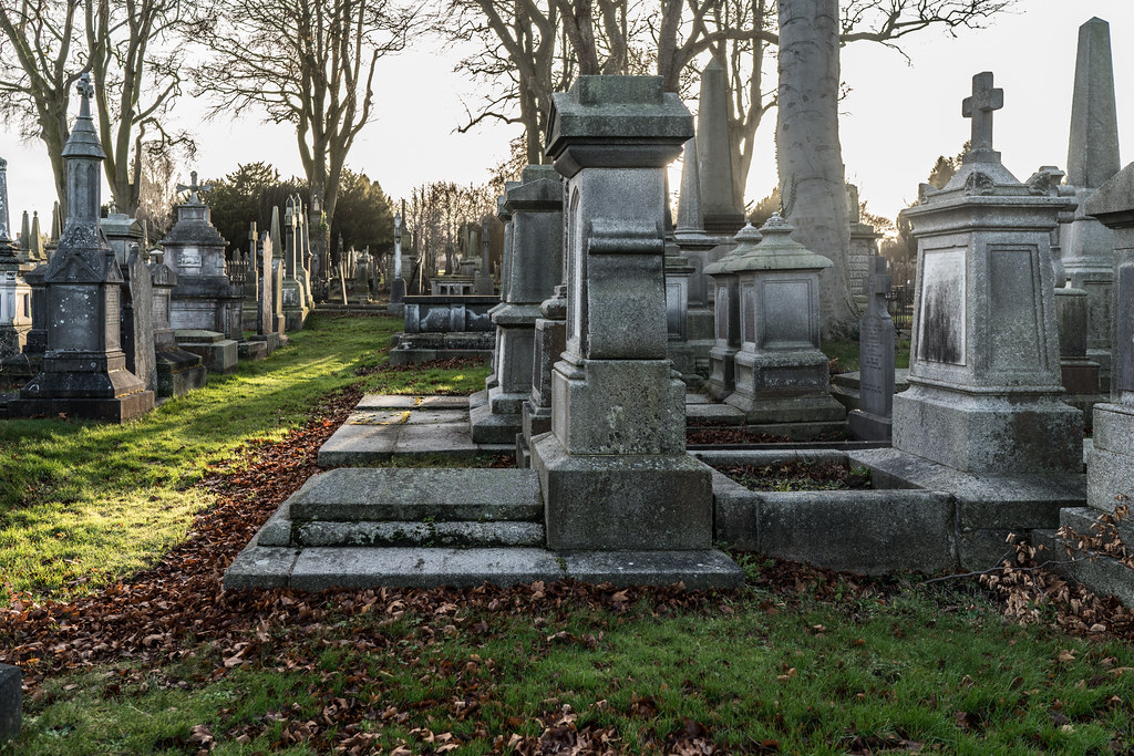 VISIT TO GLASNEVIN CEMETERY IN DUBLIN [FIRST SESSION OF 2018]-135107