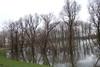 Hoogwater 2018 2 (megegj)) Tags: gert flood