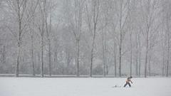 Hard work ... (Alex Verweij) Tags: sneeuw sneeuwval snow snowfall guy jongen ploeteren hardwork hardwerken alexverweij canon 5d markiii slee almere filmwijk lumierepark 10122017 december park sleeen cold