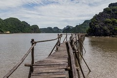 Vodní procházka (zcesty) Tags: vietnam17 skála moře most krajina vietnam catba dosvěta hảiphòng vn