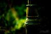 vintage hawaiian lamppost at wahiawa botanical garden leica sl noctilux joe marquez 60711 (The Smoking Camera) Tags: lamp post lampost lamppost hawaii hawaiian vintage garden noctilux asph leica sl 601 mirrorless green bokeh dof shallow botanical