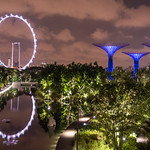 Gardens by the bay, Singapur thumbnail