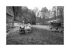 Rest time (Jan Dobrovsky) Tags: countryside leicaq nationalpark juliansands winter monochrome book thepaintedbirdmovie siesta blackandwhite outdoor story reading šumava document