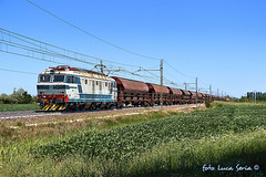 E633 204 Mercitalia Rail (equo25) Tags: treno merci ferrovia e633204 fs trenitalia cargo mir locomotiva tigre railway freight train locomotive eisenbahn lok ellok zug guterzug getreidezug