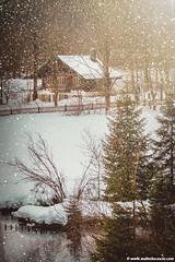 Linderhof_Bavaria (10) (walterlocascio) Tags: linderhof baviera germania neve paesaggioinnevato