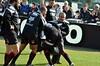 LE LOU BOURGOIN 18.02.2012 (19) (gabard.nadege) Tags: rugby le lou bourgoin sport lyon france top 14 18022012 ovalie