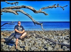 10/25/17 - Driftwood Beach at Jekyll Island, GA. (CubMelodic23) Tags: october 2017 vacation trip hdr beach ocean sand georgia jekyllisland driftwoodbeach me dave selfportrait