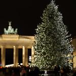 Weihnachtsbaum am Brandenburger Tor thumbnail