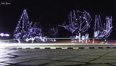 Long exposure at Christmas (Jotha Garcia) Tags: longexposureatchristmas luces lights longexposure christmas trees pozuelodealarcón madrid españa nikond3200 jothagarcia december diciembre invierno winter 2017