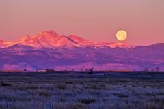 The Setting Moon - Just After Sunrise (wernsmannlynn) Tags: sunrise settingmoon longspeak colorado coloradosunrise fullmoon