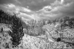 Grand Mere in Winter (mswan777) Tags: sky cloud white black monochrome 1020mm sigma d5100 nikon ansel landscape climb wind scenic nature outdoor tree sand tall winter cold snow hike dune
