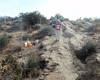007 Checking The Control Location (saschmitz_earthlink_net) Tags: 2018 california orienteering vasquezrocks aguadulce losangelescounty laoc losangelesorienteeringclub