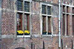 Gant_DSC_4635_001_Gant (gilmartinmiquel) Tags: gant gent gante gand monumental arquitectura belgium bélgica ciutat ciudad city turisme turismo canal