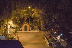 Ψίνθος (Psinthos.Net) Tags: χριστούγεννα christmas christmas2017 χριστούγεννα2017 ψίνθοσ psinthos christmasornaments χριστουγεννιάτικαστολίδια στολίδια ornaments night βράδυ νύχτα βράδυχειμώνα χειμωνιάτικηνύχτα νύχταχειμώνα χειμωνιάτικοβράδυ δεκέμβρησ δεκέμβριοσ december winter χειμώνασ vrisi vrisiarea vrisipsinthos βρύση περιοχήβρύση βρύσηψίνθου βρύσηψίνθοσ δρόμοσ road πλακόστρωτο πεζοδρόμιο sidewalk pavement planetree πλάτανοσ εκκλησάκι chapel άγιοσνικόλασ άγιοσνικόλαοσ agiosnikolas agiosnikolaos saintnicolas ευκάλυπτοι eucalypts railings κάγκελα γεφύρι bridge spring πηγή πεζούλι mantel
