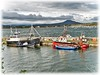 Roundstone, Co. Galway. (willieguildea) Tags: harbour port quay boat boats fishingboats water waterscape landscape sky clouds roundstone galway ireland eire coast coastal coastalireland mountain bay sea