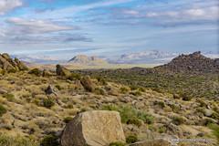 Sonoran desert landscape (doveoggi) Tags: 0762 arizona scottsdale mcdowellsonoranpreserve desert landscape mountains boulders sonorandesert