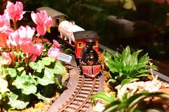 The Toy Train (michael_orr25) Tags: nikond5500 christmas christmaslights lewisginter richmond virginia nightscape lights modeltrain