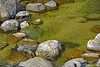 Thinking Of Summer (jimgspokane) Tags: clearcreek mccallidaho creeks mountains mountainroads mountainstreams camping idahostate otw