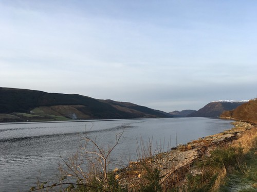 Loch Striven, afternoon